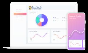 Seyfmark Dashboard analytics